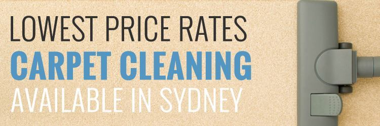 Carpet Cleaning Orchard Hills