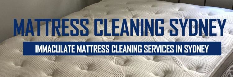 Mattress Steam Cleaning Round Corner