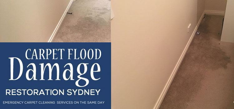 Emergency Carpet Restorations South Coogee
