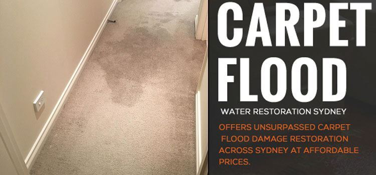 Flood Water Damage Restoration Bucketty