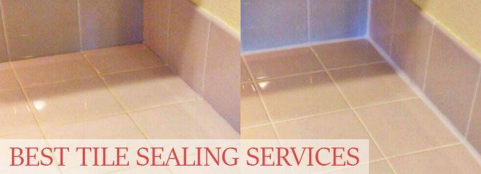 Tile Sealing Services Clarkefield