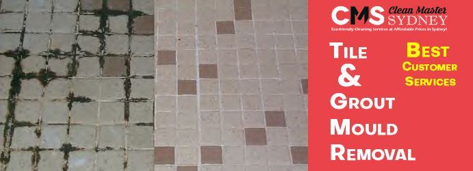 Tile Mould Removal Sydney