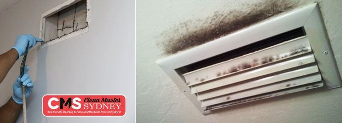 Air Duct Cleaning Waverley Park