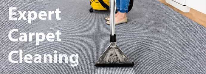 Expert Carpet Cleaning Mount White