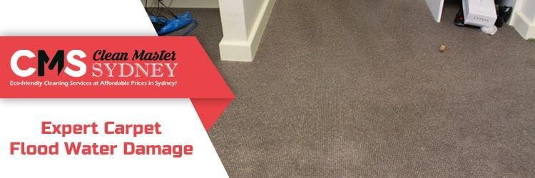 Best Carpet Flood Water Damage