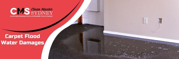Carpet Flood Water Damages