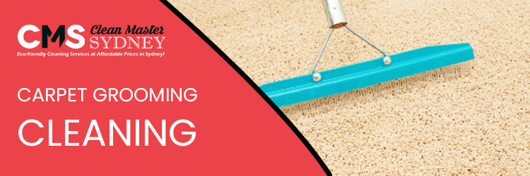 Carpet Grooming Cleaning