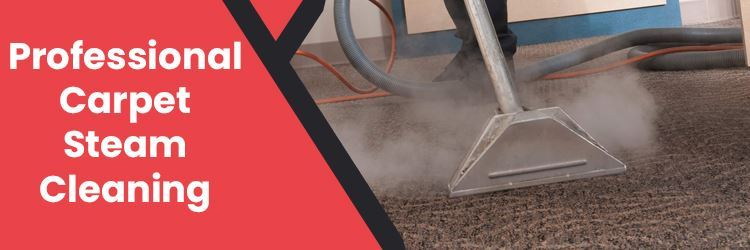 Professional Carpet Steam Cleaning Botany