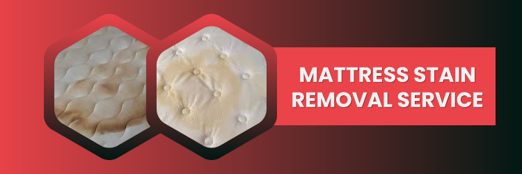 Mattress Stain Removal Service