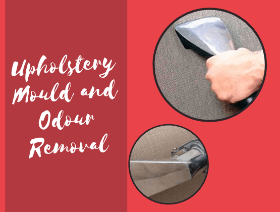 Upholstery Mould and Odour Removal Services Sydney