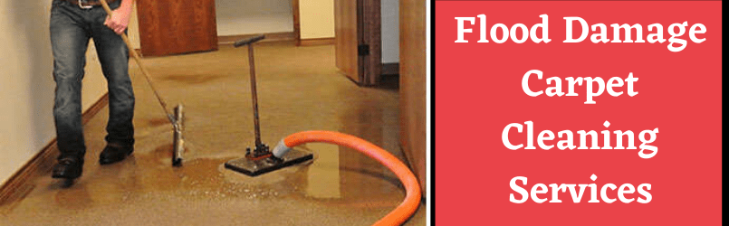 FLood Damage Carpet Cleaning Services