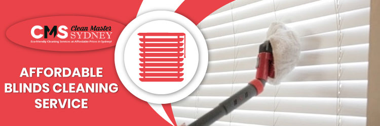 Blinds Cleaning Service