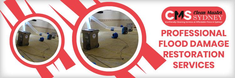 Expert Flood Damage  Restoration Services