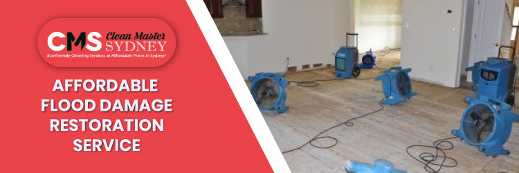 Flood Water Damage Restoration Services
