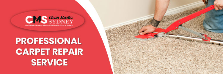 Professional Carpet Repair Service
