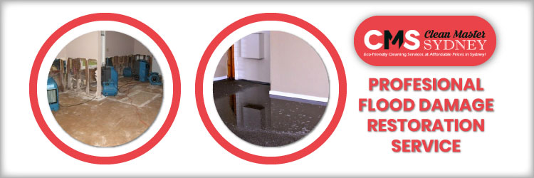 Professional Flood Damage Restoration Services