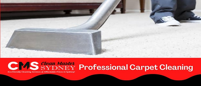 Professional Carpet Cleaning Botany