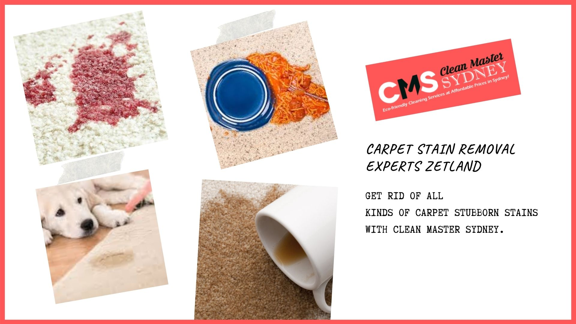 Carpet Stain Removal Experts Zetland