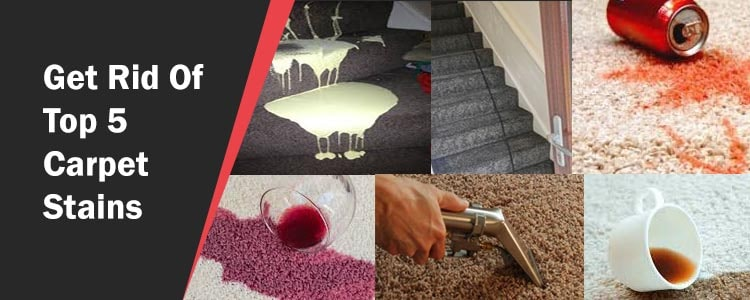 Get Rid Of Top 5 Carpet Stains