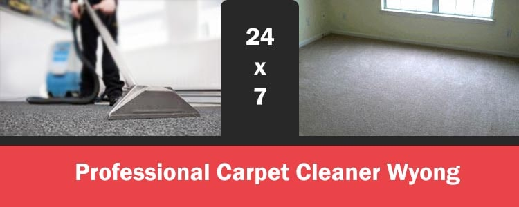 Professional Carpet Cleaner Wyong